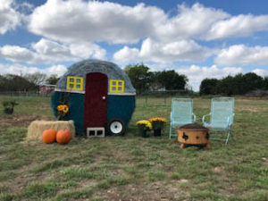 Happy Halloween at Country Oasis RV Park near Georgetown TX