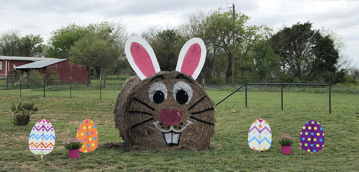 easter bunny made from hay bale and easter eggs in the ground at country oasis rv park in texas
